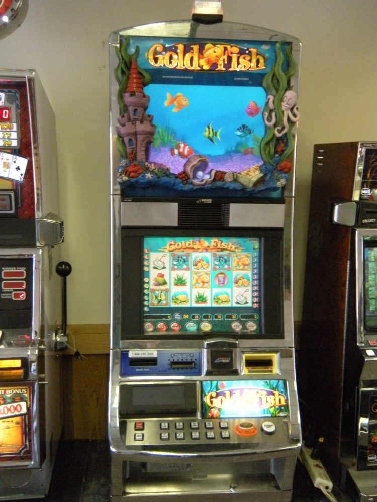 Gold fish slot machine ohio river slots for Fish casino slot