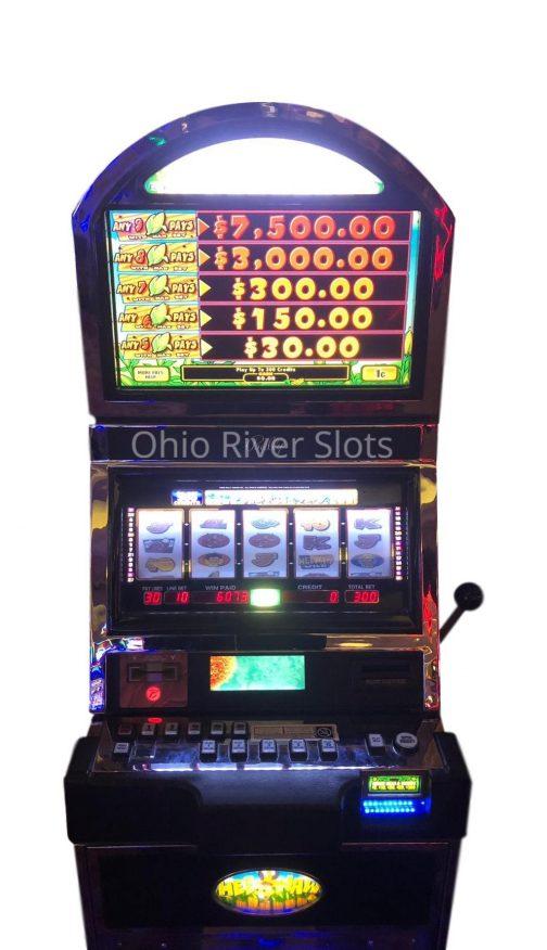 Hee Haw slot machine
