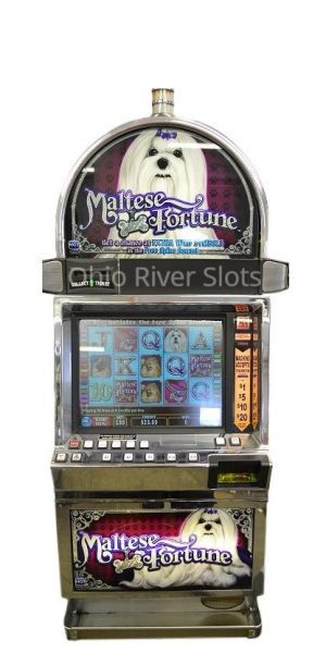 Maltese Fortune Slot machine