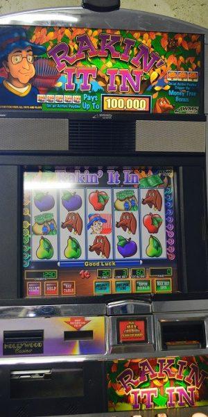 Rakin It In slot machine