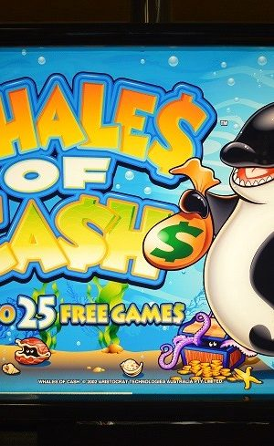 Whales Of Cash 1