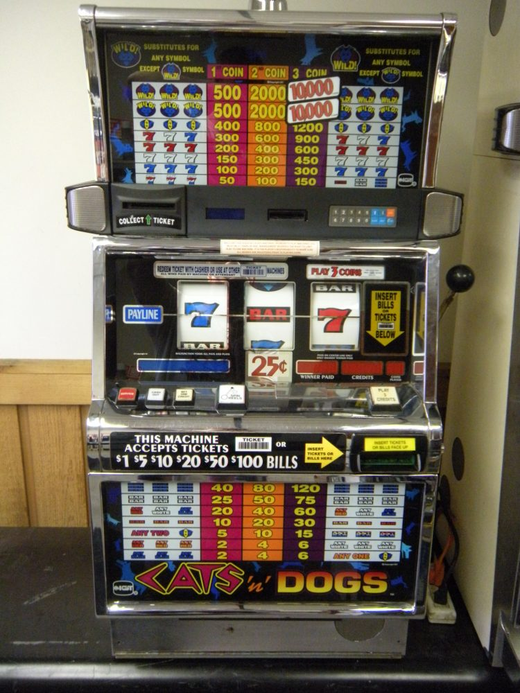 Cats And Dogs Slots