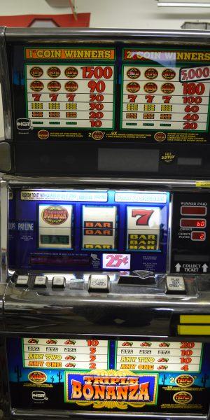 Triple Bonanza slot machine