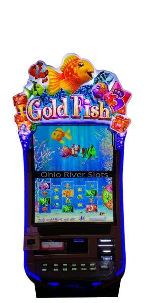 Gold Fish 3
