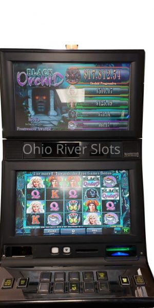 Black Orchid slot machine